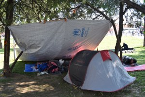 Refugees left no option but to sleep in the parks of Belgrade, Serbia with little or no shelter